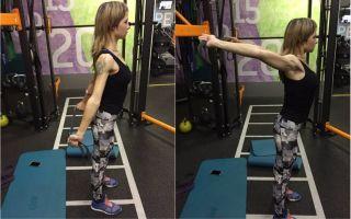 Растяжка и гимнастика для начинающих в домашних условиях