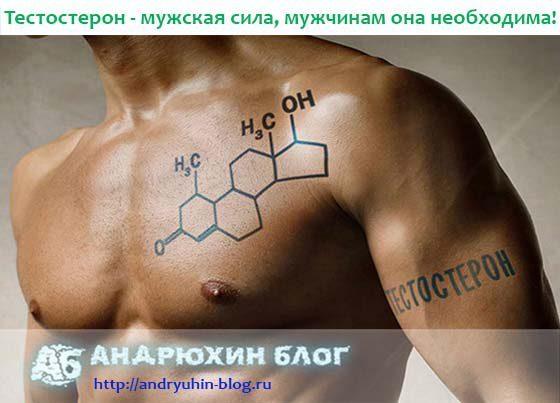 Как поднять тестостерон в организме у мужчины