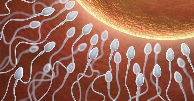 Как выглядит и какого цвета должна быть сперма