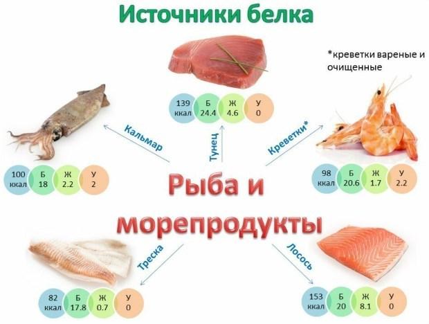 Белковые продукты для похудения: список и таблица с содержание белка