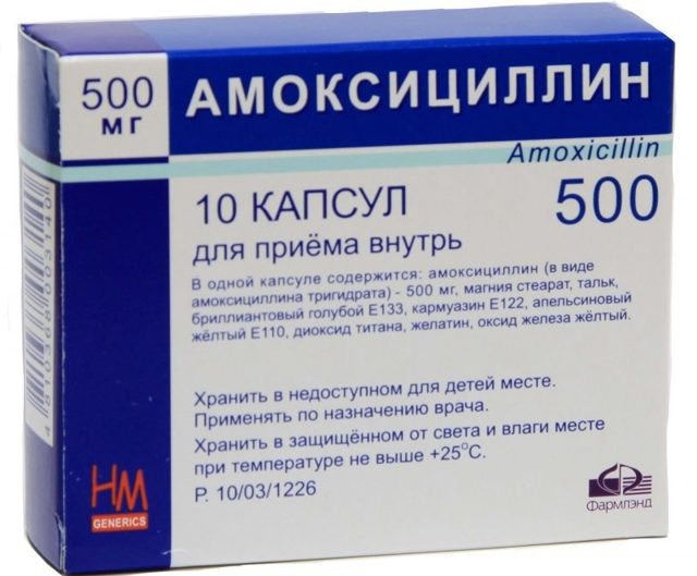 Гемолитический стафилококк или стафилококк хаемолитикус