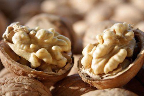 Масло грецкого ореха для волос: ореховое dnc для роста