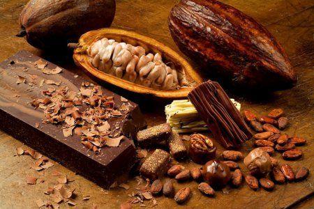 Масло какао для волос: отзывы и применение