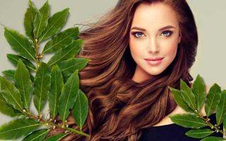 Лавровый лист для волос: лавровое масло для прядей
