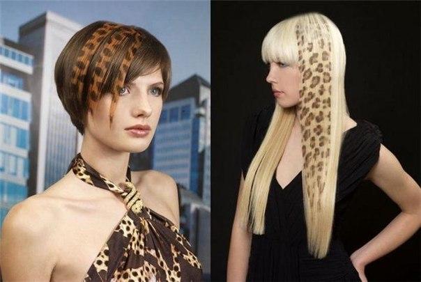 Камуфляж для волос: состав, способы применения и результаты