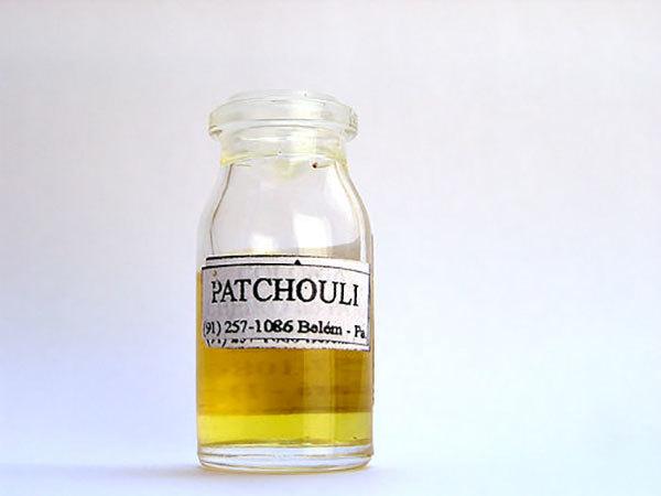 Эфирное масло пачули: свойства и запах