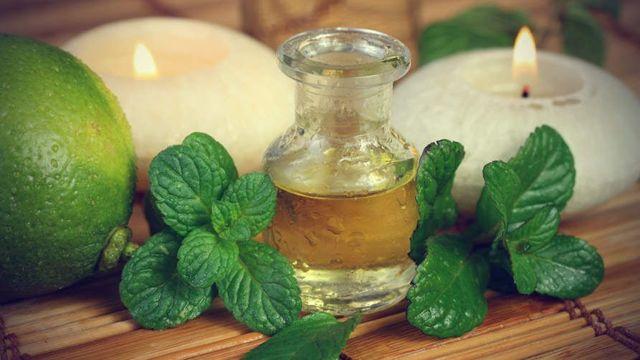 Масло мяты для волос: свойства, состав, применение в домашних условиях
