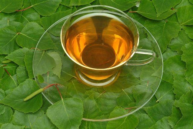 Березовый отвар из листьев для волос: свойства, применение, рецепты