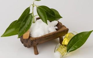 Камфорное масло для волос: для ресниц, инструкция по применению и свойства