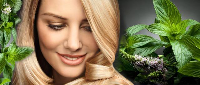 Крапива для волос: от выпадения отвар, настой, ополаскивание и польза