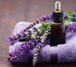Эфирное масло лаванды для волос: свойства, применение и состав