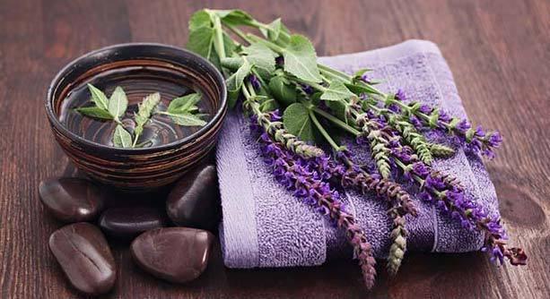 Шалфей для волос: применение эфирного масла шалфея против выпадения волос